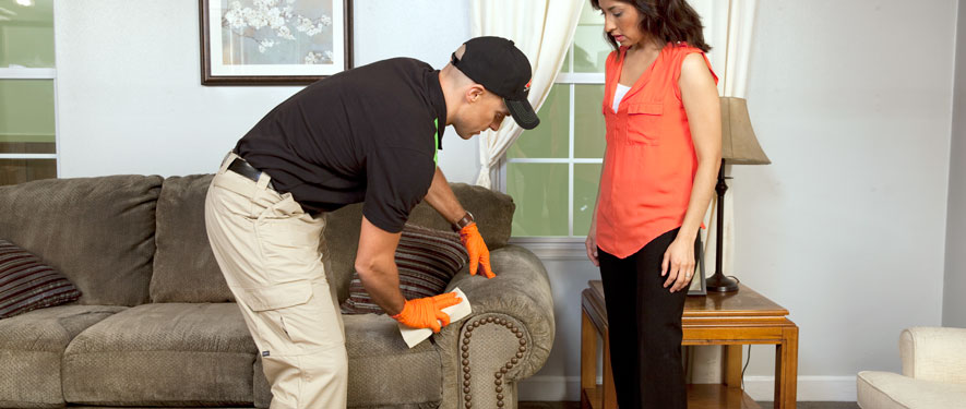 Pikeville, KY carpet upholstery cleaning